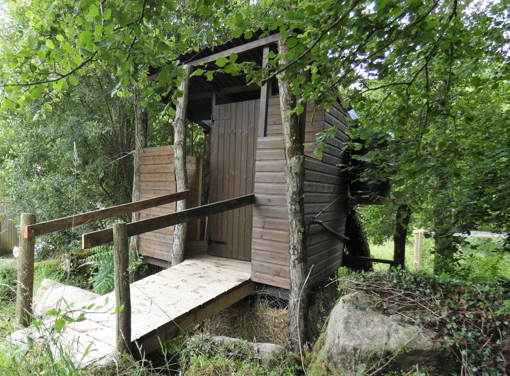Tree bog, accessible, ramp, rainwater