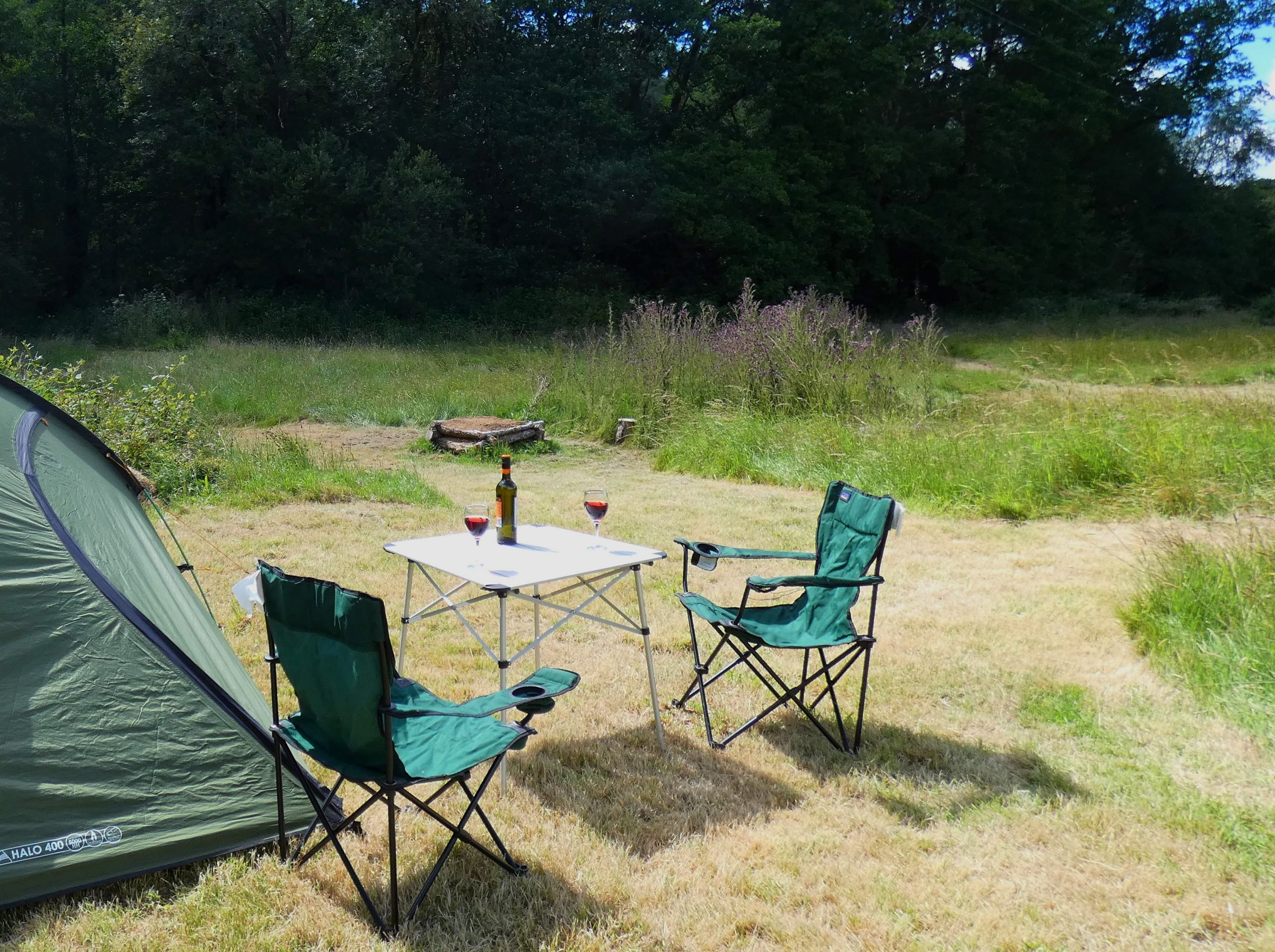 tent, table, wine, campsite, campfire, woods