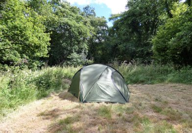 Tent in nearly wild camping area surrounded by trees. Biodiversity corridor