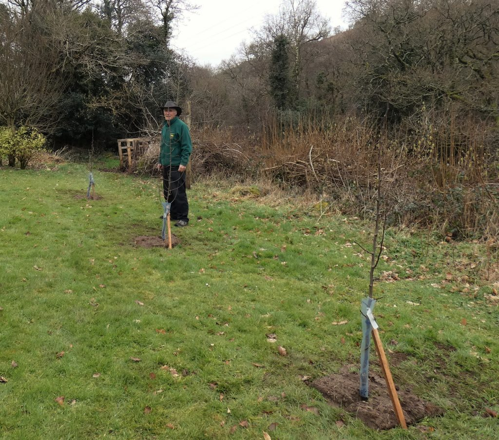 Kevin with the three fruit trees close to the house